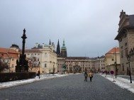 Prague Castle - Not so much as a castle, more like a palace, a cathedral and other old buildings and courtyards..