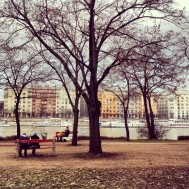 Margaret Island. Big Island park in the middle of the Danube. Nice city centre park with an obscene amount of runners.